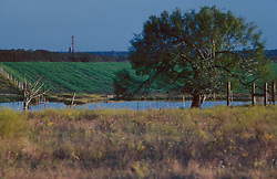 Stock photo of an on-shore rig in the distance beyond flowing farm land