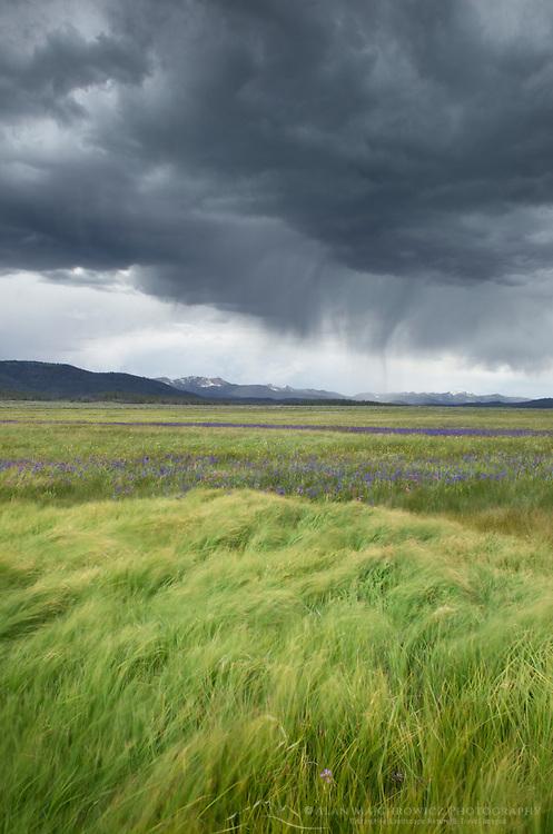 Approaching storm, Sawtooth Mountians Idaho