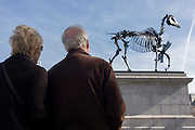 An elderly couple look up to the sculpture known as Gift Horse, by German artist Hans Haacke, after its unveiling in London's Trafalgar Square on the public space called the Fourth Plinth. London mayor Boris Johnson financed the 10th artwork to appear here. The skeletal, riderless horse (derived from The Anatomy of a Horse - George Stubbs, 1766) with a London Stock Exchange tickertape is a comment on power, money and history.