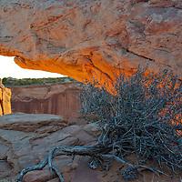Moab Shoot 2011  Moab Shoot 2011 Canyonlands, Island in the Sky area, Meza Arch.