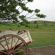 A disused cart on display at Matthew's Vintage Collection  near Kaitaia.Northland, New Zealand. ..Matthew's Vintage Collection is a privately owned collection of vintage cars and machinery used in farming dating back to the early 1900's. Accumulated and restored by an avid vintage enthusiast over the last 40 years, covering over 1100 square meters of display area...Matthews Vintage Collection includes an extensive range of Farmall tractors covering a period from 1920's to 1950's as well as a variety of other makes..The selection of vintage cars including Nash's, Chevrolets and a Singer Roadster. Kaitaia Northland, New Zealand. 20th November 2010 Photo Tim Clayton..
