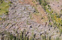 THEMENBILD - Der Sturm Vaia hat in der Nacht auf den 30. Okober 2018 lokal für Orkanböen mit bis zu 130 km/h gesorgt. In Kärnten wurde mittlerweile 1 Mio. Fm Schadholz durch Windwurf bestätigt. Die Gemeinde Grosskircheim ist mit ca. 100.000 Festmeter Schadholz betroffen. Hier im Bild Windwurfgebiet oberhalb von Winklsagritz. Zwei jungen Forstarbeitern aus Rumänien kamen hier am 12. September 2019 nach einem tragischen Unfall ums leben. Die beiden Forstarbeit im Alter von 21 und 29 Jahren, arbeiteten im Wald im unteren Drittel der Seilbahntrasse. Gegen 18.45 Uhr kam es aus bisher unbekannter Ursache zu einem Seilriss des Zugseiles, worauf der Laufwagen ungebremst mit hoher Geschwindigkeit Richtung Talanker fuhr. Nach ersten Erhebungen dürften die beiden Forstarbeiter nach Arbeitsschluss mit der Laufkatze bergwärts gefahren sein, als es zum Seilriss kam. Aufgenommen am Montag 16. September 2019 in Grosskircheim // During the night of the 30th of October 2018, storm Vaia locally caused gale-force gusts of up to 130 km/h. In Carinthia, 1 million cubic meters of damaged wood has been confirmed by wind throws. The municipality of Grosskircheim is affected by about 100,000 cubic meters of damaged wood. Here in the picture, Wind throw area above Winklsagritz. Two young workers from Romania are killed on 12 September 2019 after a tragic accident. The two forestry workers, aged 21 and 29, worked in the forest in the lower third of the cable car route. At 6:45 pm, due to a previously unknown cause, there was a rope break on the towing rope, causing the carriage to drive unchecked at high speed towards the valley. After initial surveys, the two workers are likely to have gone uphill after work with the trolley, when it came to rope breakage.<br /> . Pictured on Monday, September 16, 2019 in Grosskircheim. EXPA Pictures © 2019, PhotoCredit: EXPA/ Johann Groder