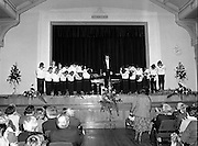Vienna Boys Choir.   (P5)..1981..25.11.1981..11.25.1981..25th November 1981..The Vienna Boys Choir performed a concert at the Royal Dublin Showgrounds (RDS), Concert Hall, Ballsbridge, Dublin, last night. A packed audience enjoyed the recital from the world renowned choir...The Vienna Boys Choir bow to the audience prior to beginning the recital.