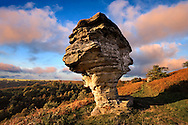 Bridestone rock formation in Dalby forest. Formed by softer sndstone being eroded faster that the limestone that is above it. North Yorks Moors National Park .<br /> <br /> Visit our ENGLAND PHOTO COLLECTIONS for more photos to download or buy as wall art prints https://funkystock.photoshelter.com/gallery-collection/Pictures-Images-of-England-Photos-of-English-Historic-Landmark-Sites/C0000SnAAiGINuEQ