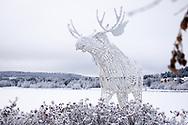 ÖSTERSUND 20191226<br /> Dekorationer i Östersund på Annandag jul.<br /> <br /> Foto: Per Danielsson/Projekt.P
