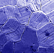 A Scanning electron microscope (SEM) image of a crystal structure found inside a micrometeorite. The field of view of this image is 80 um wide. Micrometeorites routinely fall all over the surface of earth. This is primarily an iron meteorite with small amounts of other elements. This meteorite melted from atmospheric melting as it was captured in the earths atmosphere. The frictional heating melted the martial and surface tension of the molten metals brought it to a circular shape. Magnetic iron micrometeorites are easy to find with the help of a strong magnet. The crystal structure of the meteorite is visible in this image.
