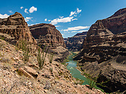 Starting from River Mile 187.9 in Grand Canyon National Park, Whitmore Trail heads north into Grand Canyon–Parashant National Monument (covering 3 miles round trip with 920 feet gain), on Day 14 of 16 days rafting 226 miles down the Colorado River in Arizona, USA.