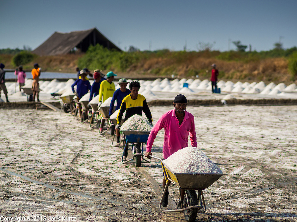 09 MARCH 2015 - NA KHOK, SAMUT SAKHON, THAILAND:  A line of salt farm workers bringing salt out of the fields in Samut Sakhon, Thailand. The coastal provinces of Samut Sakhon and Samut Songkhram, about 60 miles from Bangkok, are the center of Thailand's sea salt industry. Salt farmers harvest salt from the waters of the Gulf of Siam by flooding fields and then letting them dry through evaporation, leaving a crust of salt behind. Salt is harvested through dry season, usually February to April. The 2014 salt harvest went well into May because the dry season lasted longer than normal. Last year's harvest resulted in a surplus of salt, driving prices down. Some warehouses are still storing salt from last year. It's been very dry so far this year and the 2015 harvest is running ahead of last year's bumper crop. One salt farmer said prices are down about 15 percent from last year.   PHOTO BY JACK KURTZ