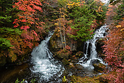 """Ryuzu Waterfall (Ryuzu no Taki, """"dragon head waterfall"""") on Yukawa River near its discharge into Lake Chuzenji, in Nikko National Park, Tochigi Prefecture, Japan. Autumn foliage colors typically peak here in early October, but we saw good colors on October 23, 2018. Follow the river upstream for 300 meters for more views of the rushing river, then catch the bus, or continue on the trail towards Senjogahara Marshlands."""