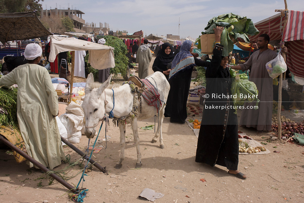 A local woman carries her purchases past a stallholder and his mule at the weekly market at Qurna, a village on the West Bank of Luxor, Egypt.