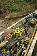 Bushmeat in Canoe<br />