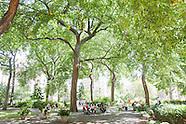 Union Square Park   Selected Images