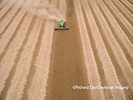 63801-09702 Soybean Harvest, John Deere combine harvesting soybeans - aerial - Marion Co. IL
