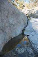 Intermittent stream in Bear Canyon, Coronado National Forest, Arizona