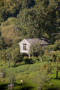 Coopers Chapel, Slad Valley, Gloucestershire. Architect: Millar Howard Workshop. This building sits at the bottom of a garden looking out over the slad valley towards Stroud. It provides a small meditative space for individual or group meeting. It is built using the local Cotswold Stone and timeber. Various important details were created in collaboration with the client, a wood carver, using some unusual and special woods.