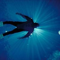 Diver Climber