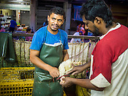 07 OCTOBER 2014 - GEORGE TOWN, PENANG, MALAYSIA: Men slaughter chickens in a market in George Town (also Georgetown), the capital of the state of Penang in Malaysia. Named after Britain's King George III, George Town is located on the north-east corner of Penang Island. The inner city has a population of 720,202 and the metropolitan area known as George Town Conurbation which consists of Penang Island, Seberang Prai, Kulim and Sungai Petani has a combined population of 2,292,394, making it the second largest metropolitan area in Malaysia. The inner city of George Town is a UNESCO World Heritage Site and one of the most popular international tourist destinations in Malaysia.         PHOTO BY JACK KURTZ