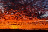 Sunrise, Nxai Pan National Park, Botswana.