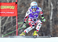 27.11.2015, XXX, Aspen, USA, FIS Weltcup Ski Alpin, Aspen, Riesenslalom, Damen, 1. Lauf, im Bild Eva-Maria Brem (AUT) // Eva-Maria Brem of Austria Mikaela Shiffrin of the USA during the first run of ladies Giant Slalom of Aspen FIS Ski Alpine World Cup at the XXX in Aspen, United States on 2015/11/27. EXPA Pictures © 2015, PhotoCredit: EXPA/ Erich Spiess