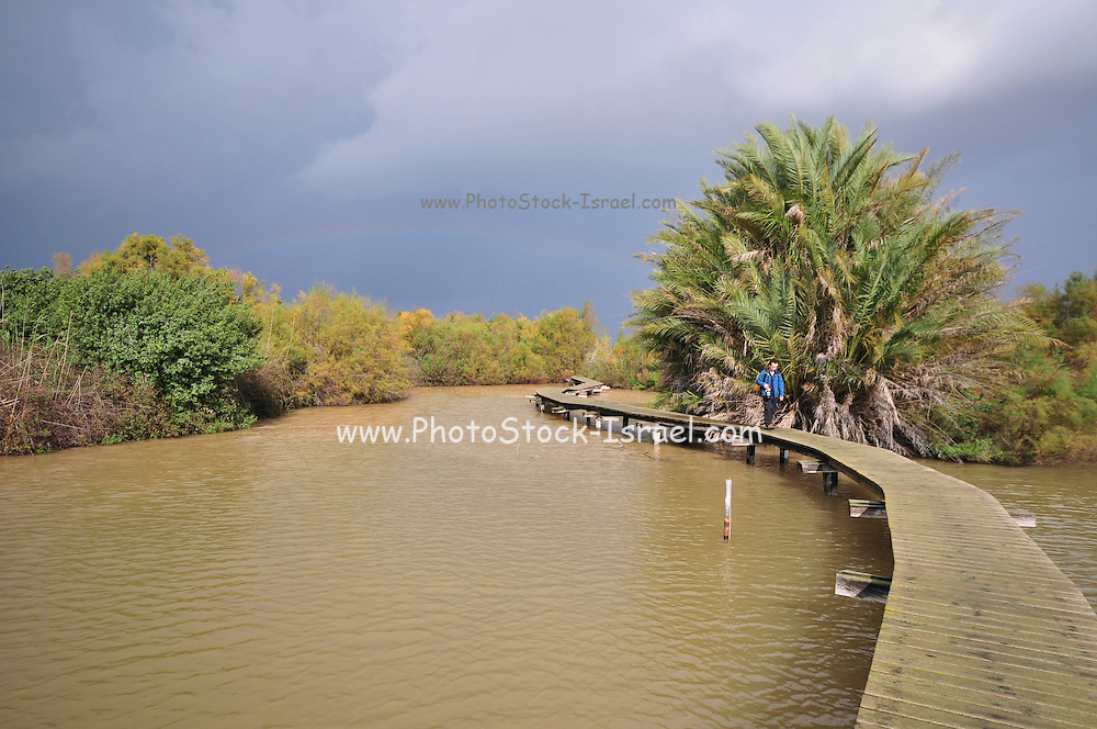 Israel, Northern District Ein Afek Nature Reserve on the Naaman River a rainbow over the nature reserve