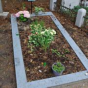 NLD/Amsterdam/20110729 - Begraafplaats Zorgvlied, graf Harry Mulisch