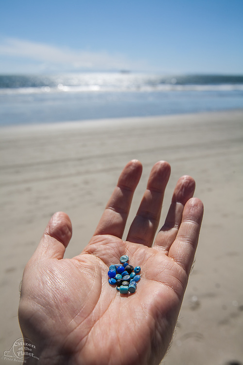 Nurdles are pre-production plastic pellets and resin materials typically under 5mm in diameter. When released during the transport, packaging, and processing of plastics, these materials find their way to coastal waterways and oceans and frequently end up in the digestive tracts of various marine creatures, causing starvation and death. Seal Beach, Orange County, California, USA