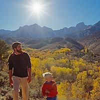 A man and boy walk near fall colored aspens under the eastern Sierra Nevada.