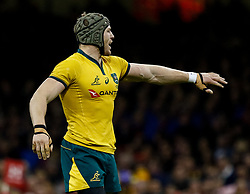 David Pocock of Australia<br /> <br /> Photographer Simon King/Replay Images<br /> <br /> Under Armour Series - Wales v Australia - Saturday 10th November 2018 - Principality Stadium - Cardiff<br /> <br /> World Copyright © Replay Images . All rights reserved. info@replayimages.co.uk - http://replayimages.co.uk