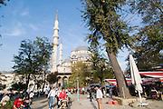 Turkey, Istanbul, The New Masque, Yeni Camii, adjacent to the Spice Bazaar
