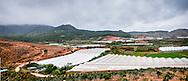 Horticulture intensive production in greenhouse, Da Lat, Vietnam, Southeast Asia
