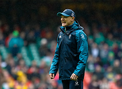 Head Coach Joe Schmidt of Ireland during the pre match warm up<br /> <br /> Photographer Simon King/Replay Images<br /> <br /> Six Nations Round 5 - Wales v Ireland - Saturday 16th March 2019 - Principality Stadium - Cardiff<br /> <br /> World Copyright © Replay Images . All rights reserved. info@replayimages.co.uk - http://replayimages.co.uk