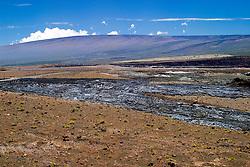 Halema`uma`u Crater, and Mauna Loa volcanic mountain, Kilauea Caldera, Hawaii, USA Volcanoes National Park, Big Island, Hawaii, USA