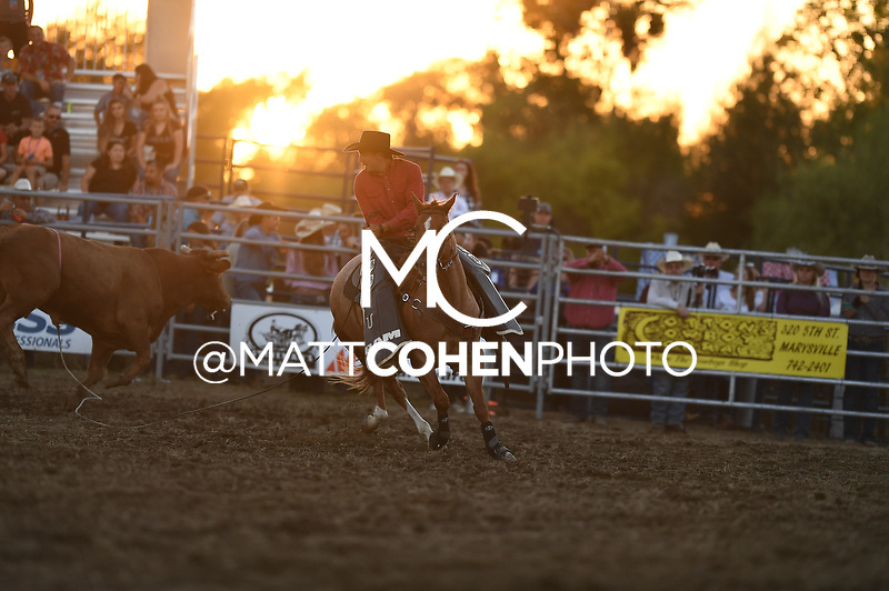 Bronc Boehnlein, Marysville 2018<br /> <br /> <br /> UNEDITED LOW-RES PREVIEW<br /> <br /> <br /> File shown may be an unedited low resolution version used as a proof only. All prints are 100% guaranteed for quality. Sizes 8x10+ come with a version for personal social media. I am currently not selling downloads for commercial/brand use.