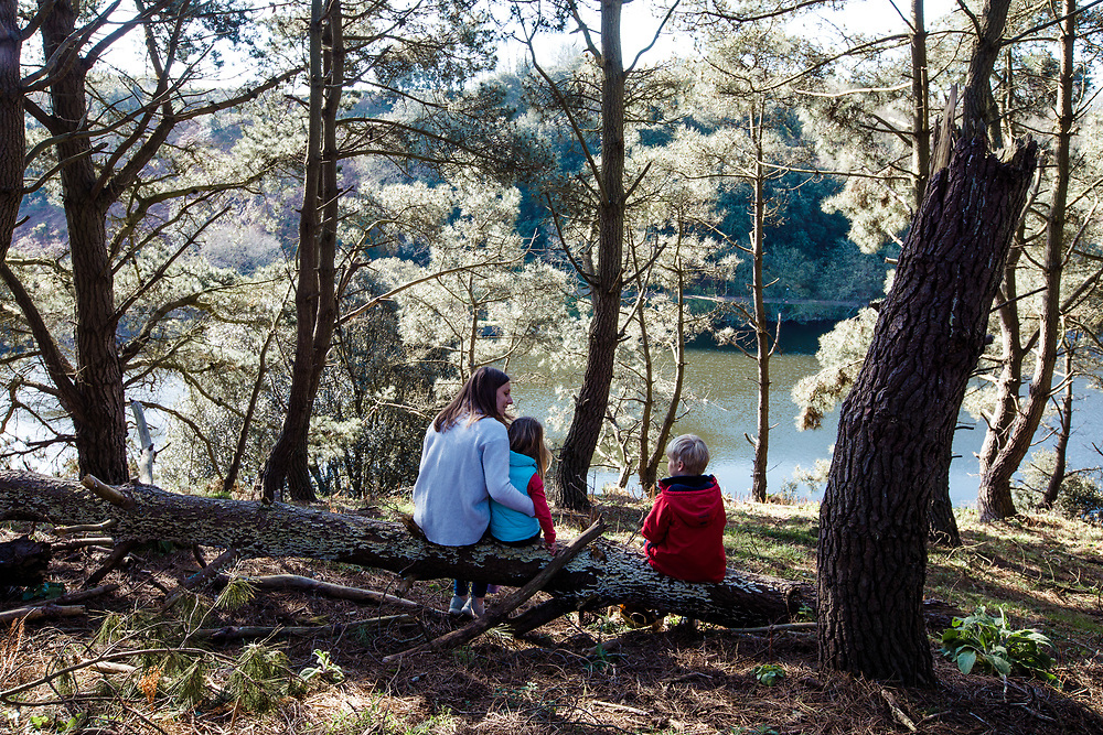 Mum and children sitting on the logs amongst the pine trees and woods at Val de la Mar Reservoir in Jersey, Channel Islands