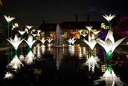 © Licensed to London News Pictures. 30/11/2017. London, UK. Illuminated snowdrops on the Jellicoe Canal at RHS Wisley Gardens. Trees and plants are illuminated at Royal Horticulture Society Wisley Gardens for the Christmas Glow. Hundreds of different lights can be seen when following the trail throughout the gardens opening 1 December 2017 – 3 January 2018. Photo credit: Peter Macdiarmid/LNP