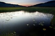 Wildlife Refuge near Swan Lake, Montana.