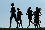 Newburgh Free Academy's Gianna Frontera, at left, leads a high school girls' cross country race at Cornwall High School in New Windsor, N.Y., on Tuesday, Oct. 1, 2013. Girls from Newburgh, Cornwall and Monroe-Woodbury ran in the race, which Frontera won. (AP Photo/Times Herald-Record/TOM BUSHEY)