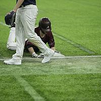 Baseball: North Central University Rams vs. Augsburg University Auggies