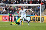 Ashley Williams of Swansea city in action. Barclays Premier league match, Swansea city v Norwich city at the Liberty Stadium in Swansea, South Wales  on Saturday 5th March 2016.<br /> pic by  Andrew Orchard, Andrew Orchard sports photography.