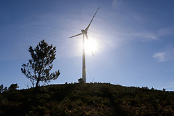 February 19, 2019 - MonçãO, Portugal - A wind turbine seen operating at the sub park Mendoiro-Bustavade, one of the 5 sub parks of the Alto Minho Wind Farm, Monção, Portugal..The Alto Minho Wind Farm has an installed capacity of 240 MW, distributed in five sub-parks, designated by Picos, Alto do Corisco, Santo António, Mendoiro-Bustavade and Picoto-São Silvestre. In the north part of the country, the Alto Minho Wind Farm in the Viana do Castelo district, of Portugal, became fully operational in November 2008. At the time of completion, it was Europe's largest on-shore wind farm. The wind farm consists of 68 Enercon E-82 2MW wind turbines and 52 Enercon E-70 E4 2MW turbines, for a grand total of 240 MW. The wind farm produces 530 GWh annually, avoiding 370,000 tonnes (410,000 tons) of carbon dioxide emissions. On March 2018, Portugal generated more renewable energy than it needed for the first time in at least 40 years. Energy from renewable sources made up 103.6 per cent of mainland electricity consumption, according to data from the country's power grid operator REN, although fossil fuels were used to occasionally top up the electricity supply. (Credit Image: © Omar Marques/SOPA Images via ZUMA Wire)