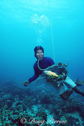 a hookah diver picks up small reef fish killed and stunned by a bomb tossed over a shallow reef in the central Philippines