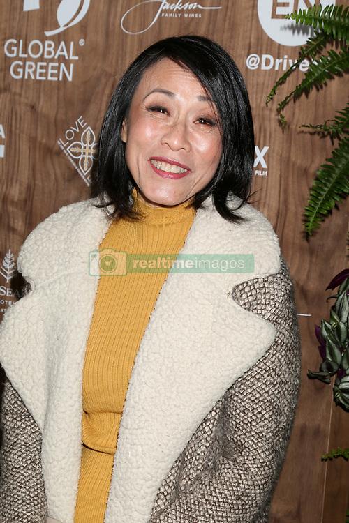 February 20, 2019 - Beverly Hills, CA, USA - LOS ANGELES - FEB 20:  Tan Kheng Hua at the Global Green 2019 Pre-Oscar Gala at the Four Seasons Hotel on February 20, 2019 in Beverly Hills, CA (Credit Image: © Kay Blake/ZUMA Wire)