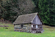 """This building has a plaque on the side calling it """"The Forge"""".  This is the oldest building at Ruckle Farm and was constructed in 1878.  Photographed in Ruckle Provincial Park on Saltspring Island, British Columbia, Canada."""