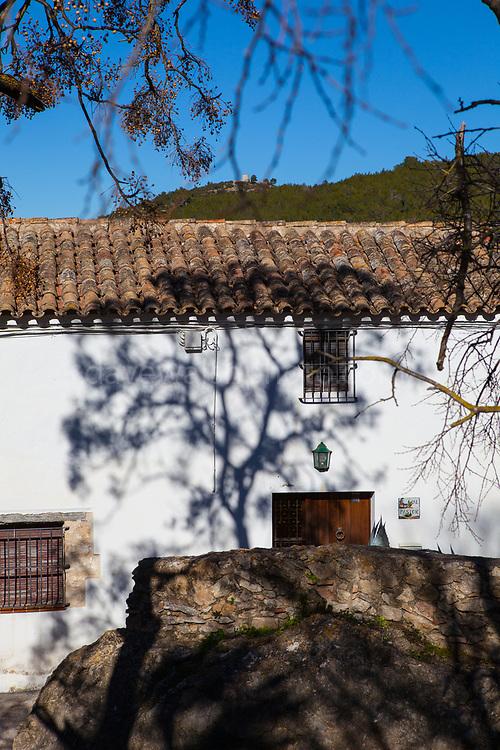 Shadow of tree on house, Olivella, Garraf, Catalonia, Spain