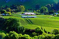 Tuki Tuki Hills, near Napier, Hawkes Bay, north island, New Zealand