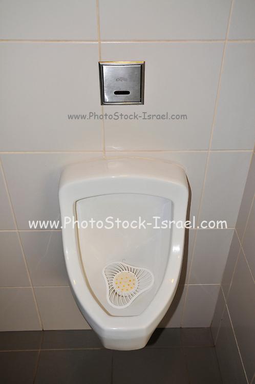 communal Urinal and wash basin