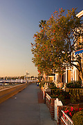 Scenic Walkway Around Balboa Island In Newport Beach Orange County, California