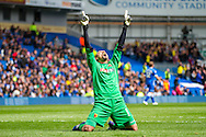 Heurelho Gomes celebrates victory during the Sky Bet Championship match between Brighton and Hove Albion and Watford at the American Express Community Stadium, Brighton and Hove, England on 25 April 2015.