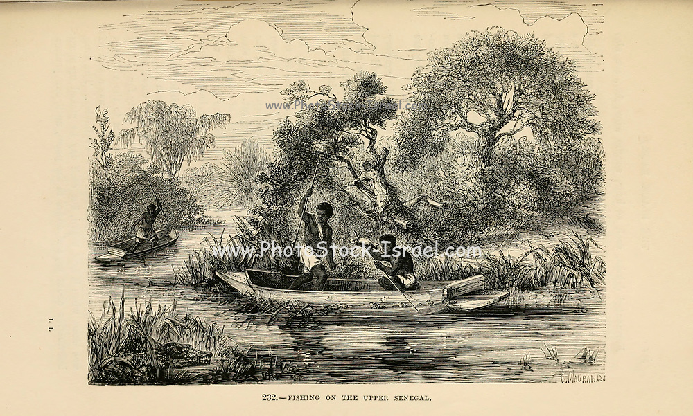 Fishing on the Upper Senegal river engraving on wood From The human race by Figuier, Louis, (1819-1894) Publication in 1872 Publisher: New York, Appleton