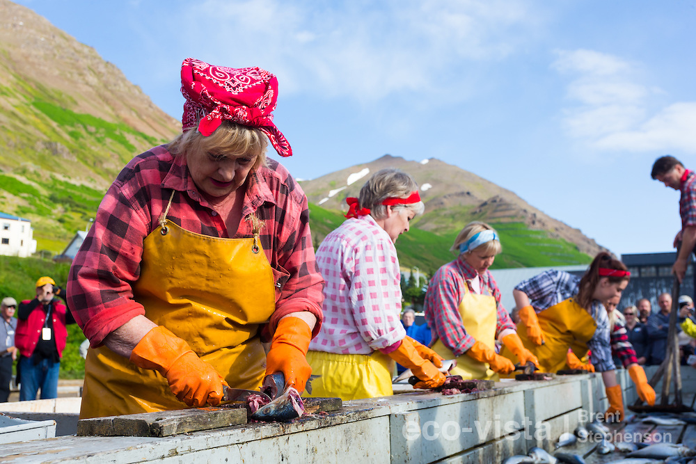 The 'Herring Girls' from the 'Herring show' relive the herring fishery era. This town was a major Herring port in 1940s and 1950s, and now has an impressive collection of Museums (The Herring Era Museum) depicting this era. Siglufjordur, Iceland. July.